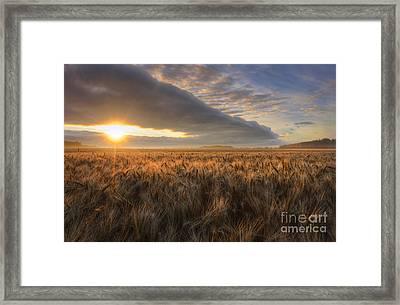 Sunrise Over Barley Framed Print