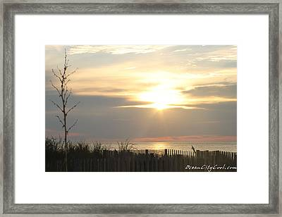 Framed Print featuring the photograph Sunrise Over Beach Dune by Robert Banach