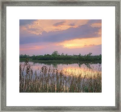 Sunrise Over Hillman Marsh Ontario Framed Print by Tim Fitzharris