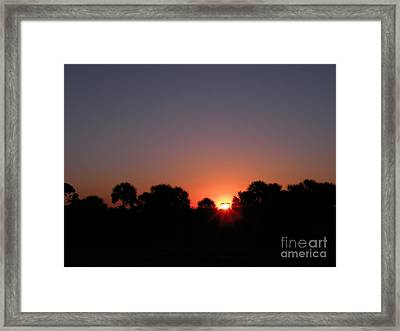 Sunrise Over St Joseph Bay Framed Print by Lora Duguay