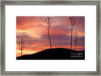 Sunrise Over The Great Smoky Mountains Framed Print by Glenn Morimoto