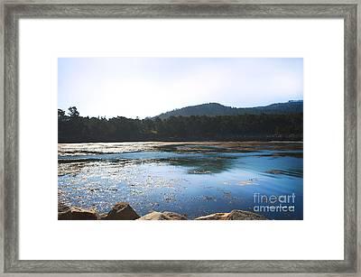 Sunrise Over Whaler's Cove At Point Lobos California Framed Print