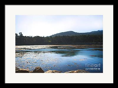 Dive Cove At Point Lobos Framed Prints