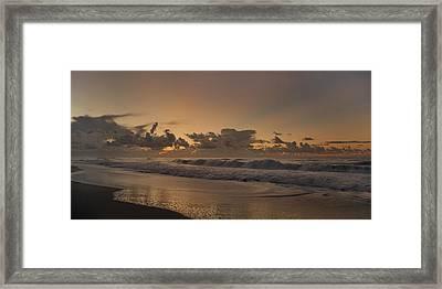 Sunrise Paradise Framed Print by Betsy Knapp