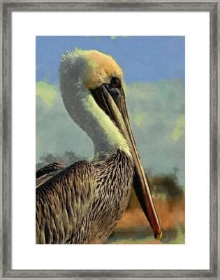 Sunrise Pelican Framed Print by Ernie Echols