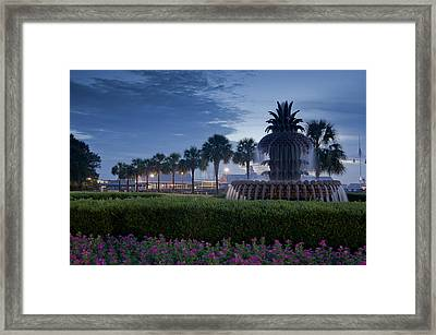 Sunrise Pineapple Fountain Framed Print