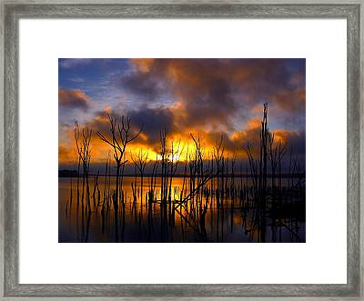 Sunrise Framed Print by Raymond Salani III