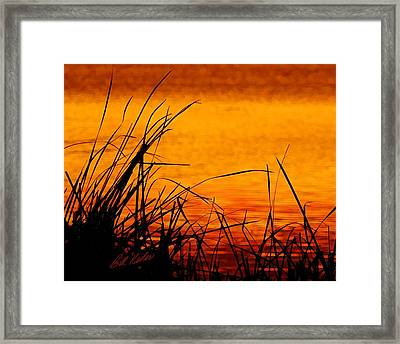 Framed Print featuring the photograph Sunrise Reflected On The Pond by Bill Kesler
