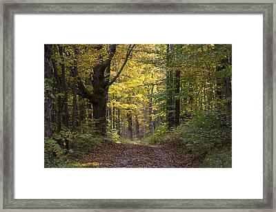 Sunrise Road Framed Print