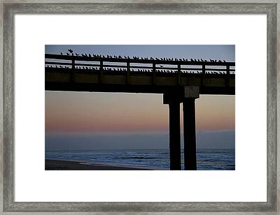 Framed Print featuring the photograph Sunrise Roll Call by Kathy Ponce