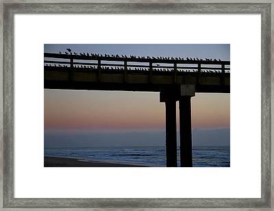 Sunrise Roll Call Framed Print
