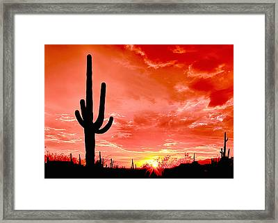 Sunrise Saguaro National Park Framed Print