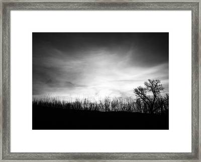 Sunrise Silhouette In Black And White Framed Print by Vishwanath Bhat