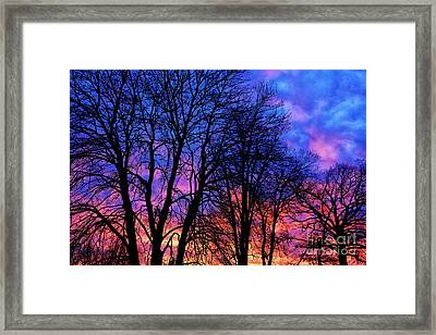 Sunrise Silhouette Framed Print by Thomas R Fletcher