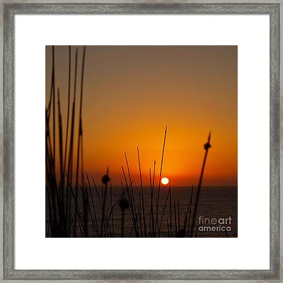Framed Print featuring the photograph Sunrise Silhouette by Trena Mara