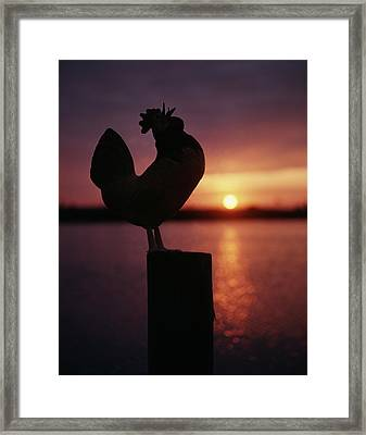 Sunrise Silhouetted Rooster On Post Framed Print