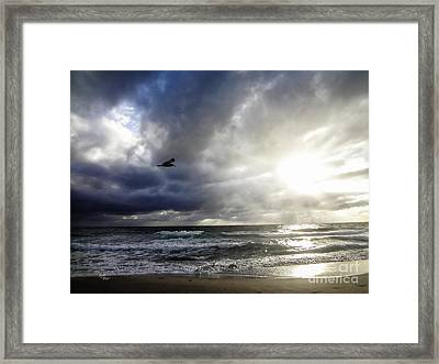 Sunrise South Florida Treasure Coast Framed Print by Ginette Callaway