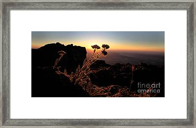 Sunrise Steens Mountain Oregon Framed Print by Michele AnneLouise Cohen