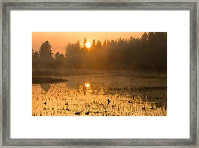 Sunrise Take Off Framed Print