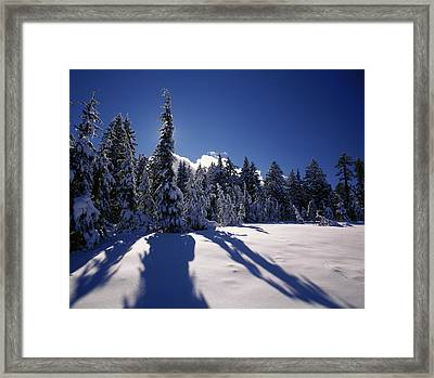 Sunrise Through Snow Covered Fir Trees Framed Print by Panoramic Images