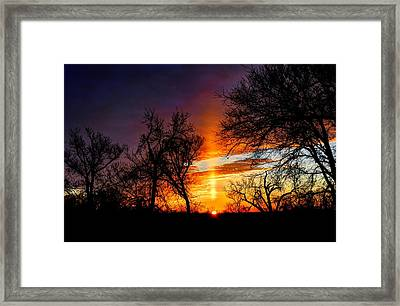 Sunrise Through The Cottonwoods Framed Print