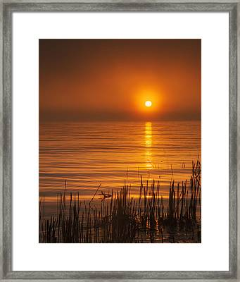 Sunrise Through The Fog Framed Print by Scott Norris