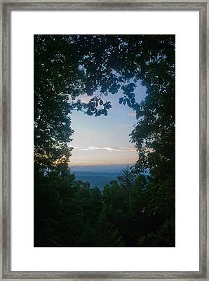 Sunrise Through The Trees Framed Print