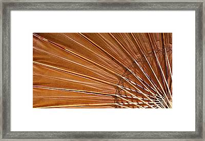 Framed Print featuring the photograph Sunrise Umbrella by Glenn DiPaola