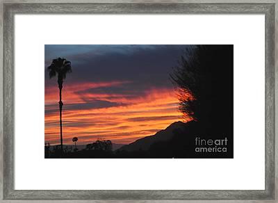 Sunrise With Lone Sentinel Over Desert Framed Print