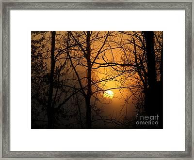 Sunrises Bloom Framed Print