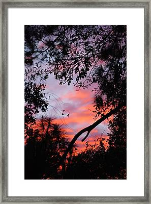 Sunset 16 Framed Print