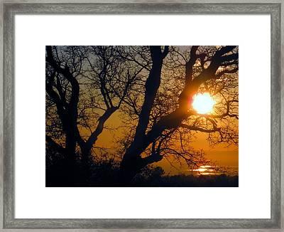 Sunset Above Rice Fields Framed Print by Debra Madonna