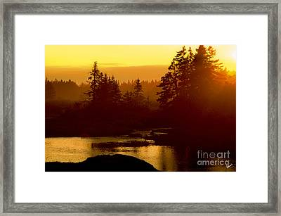 Sunset Framed Print by Alana Ranney