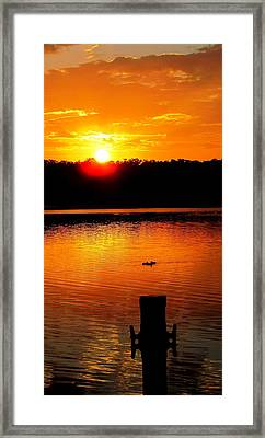 Sunset And Ducks Framed Print by Will Boutin Photos