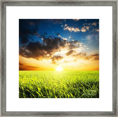 Sunset And Field Of Grass Framed Print by Boon Mee