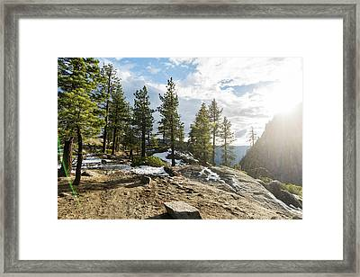 Sunset And Trail On Trees Framed Print