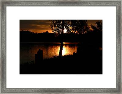 Sunset And Tree Framed Print