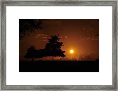 Sunset And Trees Framed Print by Cherie Haines