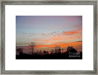 Sunset At Ankeny Wildlife Refuge Framed Print