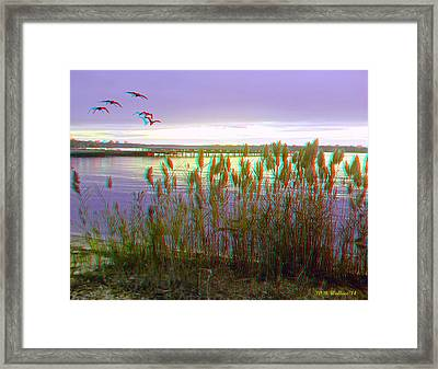 Sunset At Fort Smallwood - Use Red/cyan 3d Glasses Framed Print