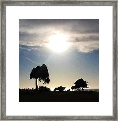Sunset At La Jolla Framed Print by Susan Garren