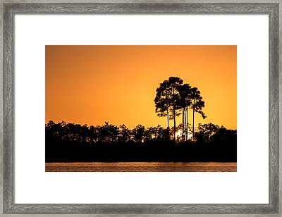 Sunset At Long Pine Key Pond Framed Print by Andres Leon