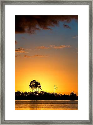 Sunset At Long Pine Key Vertical Framed Print by Andres Leon
