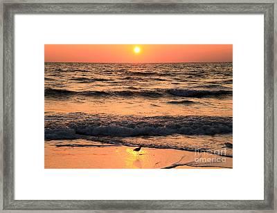 Sunset At St. Joseph Framed Print by Adam Jewell