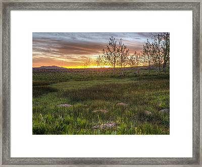 Sunset At Sunflower Flats Framed Print by Jenessa Rahn