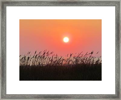 Framed Print featuring the photograph Sunset At The Beach by Cynthia Guinn