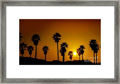 Sunset At The Beach Framed Print by David Millenheft