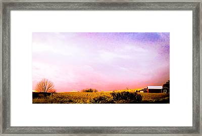 Sunset At The Farm Framed Print by Sara Frank