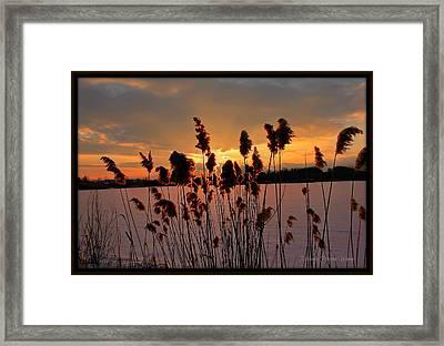 Sunset At The Pond 3 Framed Print