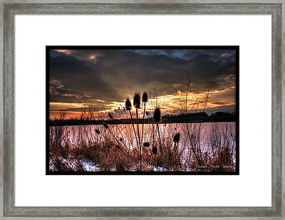 Framed Print featuring the photograph Sunset At The Pond 4 by Michaela Preston